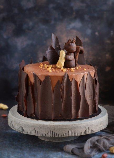 Snickers torta házilag - sós karamelles mogyorós csokitorta recept fakéreg hatású csokilapokkal - mókus torta