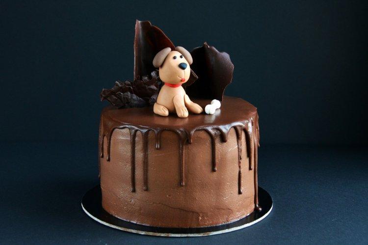 Kutyás torta - fondant kutya figura készítése egyszerűen
