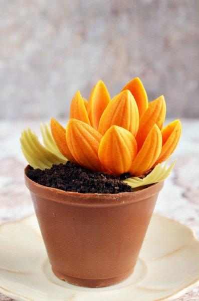 Ehető csoki virágcserép készítése mangó mousse-val töltve