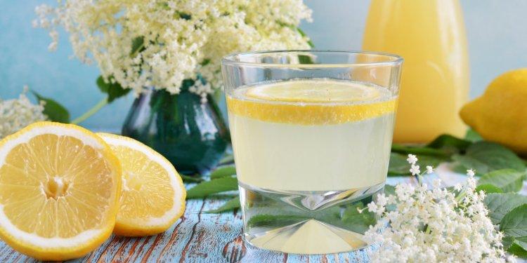 Bodzaszörp recept cukormentesen steviával és eritrittel, tartósítószer nélkül